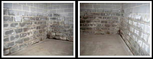 basement with water damage before repair